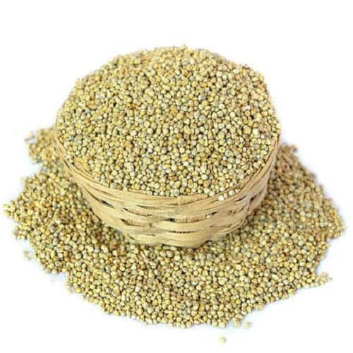 Futuro Organic Pearl Millet